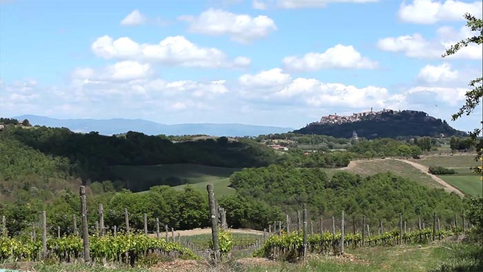 A view of Montepulciano, Tuscany from Agriturismo Terre di Nano